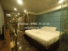 Serviced Apartments for rent in District 1 - Brand new and Nice serviced apartment 01 bedroom for rent on Tran Dinh Xu street, District 1 - 55sqm - 650USD