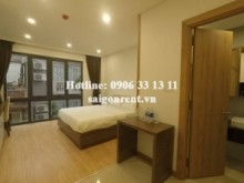 Serviced Apartments for rent in District 1 - Brand new and Nice studio serviced apartment for rent on Tran Dinh Xu street, District 1 - 25sqm - 400USD