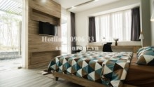 Serviced Apartments for rent in District 2 - Nice penthouse serviced apartment 01 bedroom for rent on Tran Nao street, Binh An Ward, District 2 - 100sqm - 800 USD